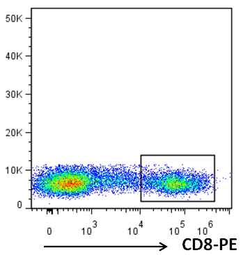 Mouse Anti-Human CD8,PE Conjugated mAb